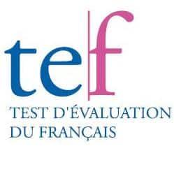 TCF和TEF_是什么 ?