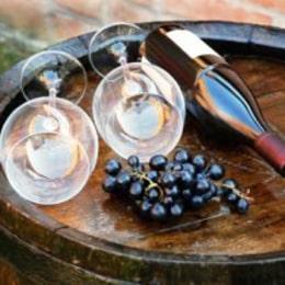 法国葡萄酒 – 5种场合搭配5种不同类型葡萄酒 5 occasions, 5 vins