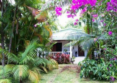 留尼汪岛_L'île de la Réunion