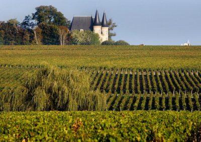 le-Médoc-法国波尔多 Bordeaux