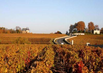 route-des-châteaux-à-Pauillac_法国波尔多 Bordeaux